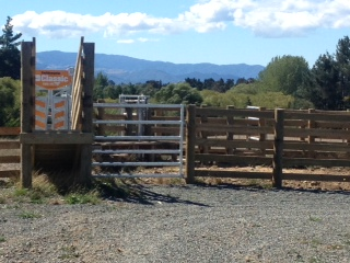 Higgins Farm Fencing in Nelson Tasman